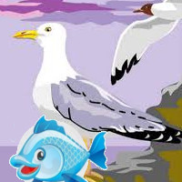 cuento de la gaviota y pez pequeño