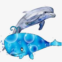 cuento de la guerra entre ballena y delfines