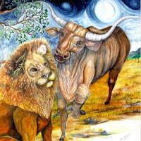 fabula del toro y leon buye