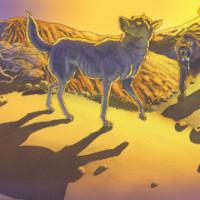 fabula lobo leon sombra
