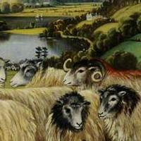 fabulas de los carnero y el lobo