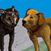 fabula de los perros y los lobos